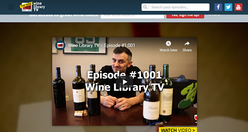 this image is the 4th example of blogs that make money in 2020. the image is a picture of Gary Vaynerchuck's Wine Library TV